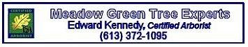 Edward Kennedy Tree Experts